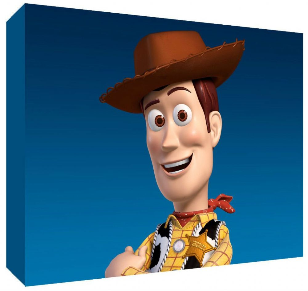 Woody Toy Story Canvas Art Choose Your Size Ready To